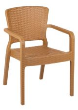 Antares Thermo Plastic Stacking Armchair in Wood